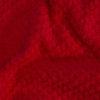Ягодка красн рябинка зоом